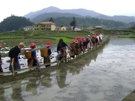 Vandring i landsbyen
