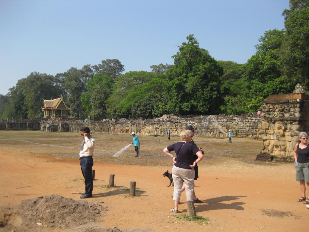 Her var der elefantkampe
